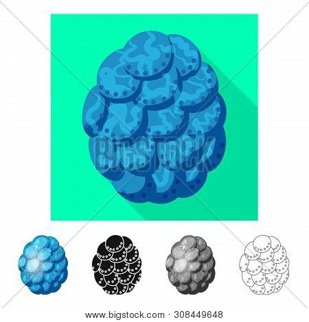 Isolated Object Of Egg And Dragon Icon. Set Of Egg And Husk Vector Icon For Stock.