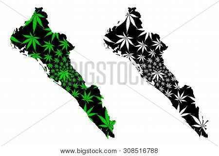Sinaloa (united Mexican States, Mexico, Federal Republic) Map Is Designed Cannabis Leaf Green And Bl