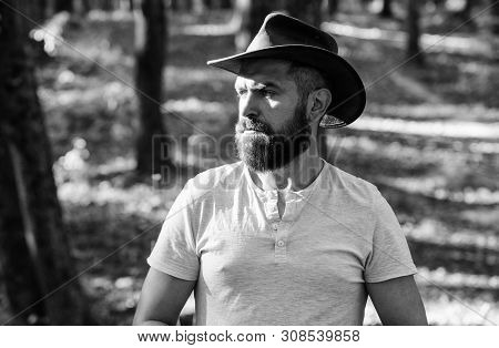 Cowboy Couture. Bearded Man In Cowboy Hat Walk In Park Outdoor. Man Hipster In Autumn Forest. Spring
