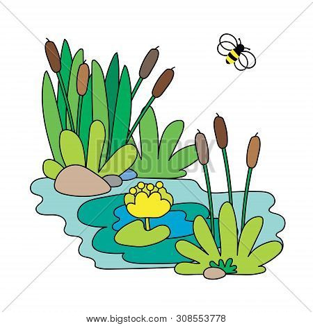 A Cute Illustration Of Bee, Reeds And Water Lily. Idyllic Landscape