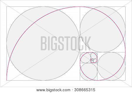 Golden Ratio Geometric Concept. Pink Fibonacci Spiral. Vector Illustration
