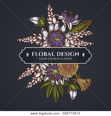 Floral Bouquet Dark Design With Dandelion, Ginger, Passion Flower Stock Illustration