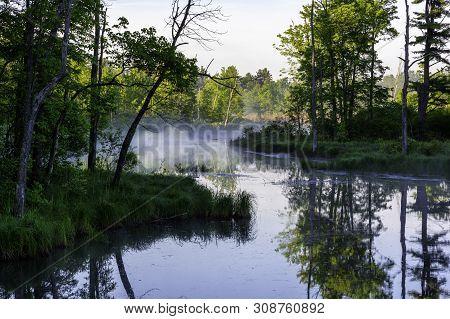 Fog On A Swamp In The Adirondacks New York