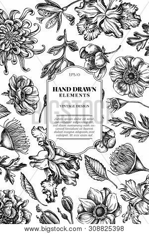 Card Design With Black And White Japanese Chrysanthemum, Blackberry Lily, Eucalyptus Flower, Anemone