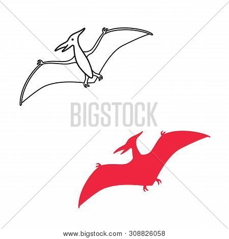 Pterodactyl Vector Silhouette And Contour. Pteranodon Dinosaur. Pterosaur Isolated On White Backgrou