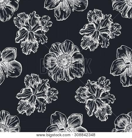 Seamless Pattern With Hand Drawn Chalk Anemone, Iris Japonica, Sakura Stock Illustration