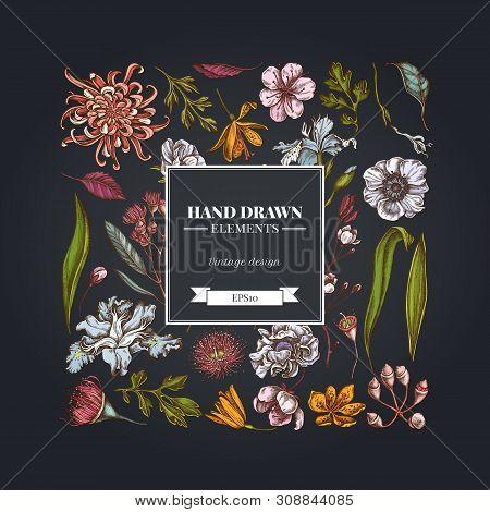 Square Floral Design On Dark Background With Japanese Chrysanthemum, Blackberry Lily, Eucalyptus Flo