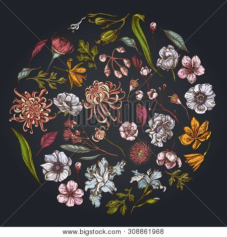 Round Floral Design On Dark Background With Japanese Chrysanthemum, Blackberry Lily, Eucalyptus Flow