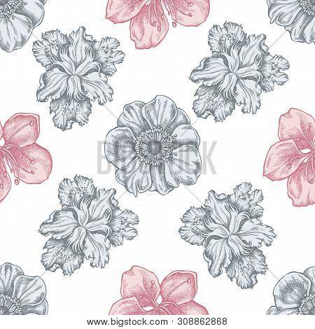 Seamless Pattern With Hand Drawn Pastel Anemone, Iris Japonica, Sakura Stock Illustration