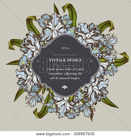 Badge Over Design With Iris Japonica Stock Illustration