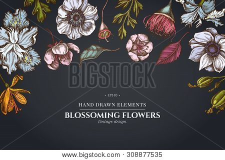 Floral Design On Dark Background With Japanese Chrysanthemum, Blackberry Lily, Eucalyptus Flower, An
