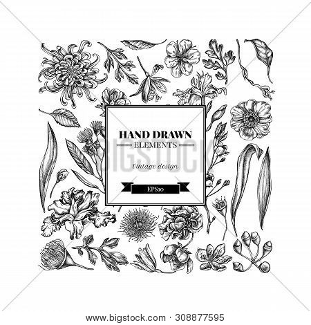 Square Floral Design With Black And White Japanese Chrysanthemum, Blackberry Lily, Eucalyptus Flower
