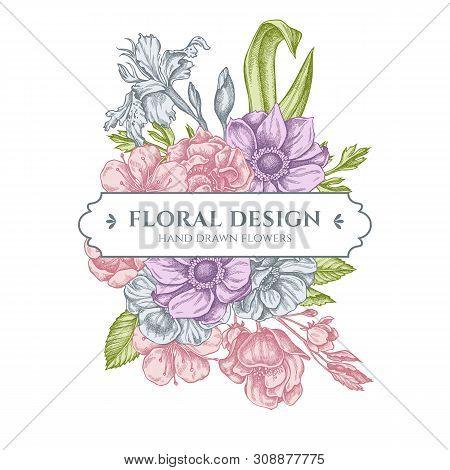 Floral Bouquet Design With Pastel Anemone, Iris Japonica, Sakura Stock Illustration