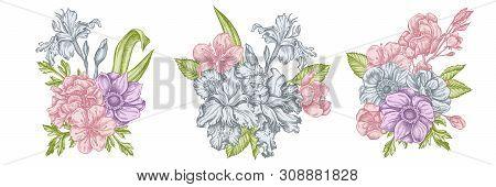 Flower Bouquet Of Pastel Anemone, Iris Japonica, Sakura Stock Illustration