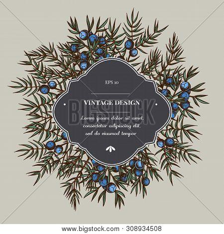 Badge Over Design With Juniper Stock Illustration