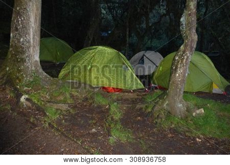 humid and wet campsite in the tropical rain forest on Mount Kilimanjaro on the Umbwe Route poster
