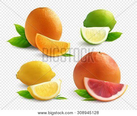 Citrus Fruits Realistic Set With Lyme Orange Lemon And  Grapefruit  Isolated On Transparent Backgrou