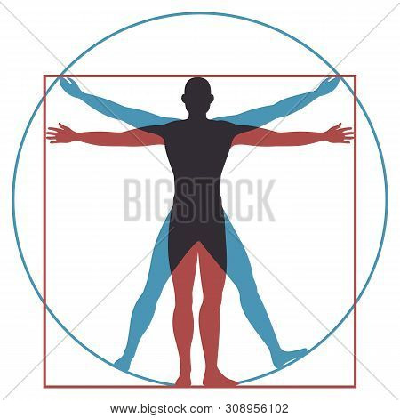 Vitruvian Man. Leonardo Da Vinci Human Body Perfect Anatomy Proportions In Circle And Square. Vector