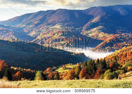 Beautiful Autumn Morning Scenery In Mountains. Fog Rising In The Valley. Mixed Forest In Fall Foliag