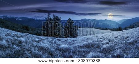 Beautiful Panorama Of Mountain Landscape At Night In Full Moon Light. Beech Trees On The Meadow With