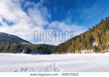 Frozen And Snow Covered Lake Synevyr. Beautiful Winter Landscape Of Carpathian Mountains. Wonderful
