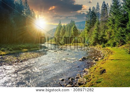 Mountain River Winding Through Forest At Sunset In Evenig. Beautiful Nature Scenery In Autumn. Spruc
