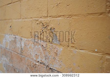 Excessive moisture can cause mold and peeling paint wall such as rainwater leaks or water leaks. poster