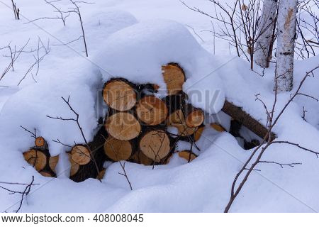 Firewood In The Snow. Pine Firewood Covered With Snow-white Snow. Neatly Stacked Firewood In The Fir