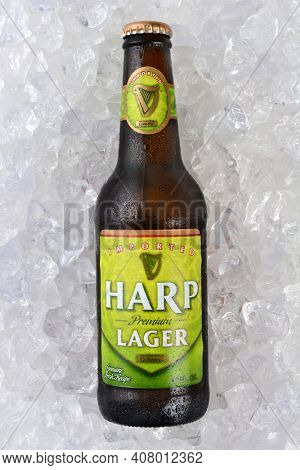 IRVINE, CA - JANUARY 11, 2015: A single bottle of Harp Lager on a bed of ice. Harp is an Irish lager created in 1960 by the Guinness Brewing Company, brewed with pure water from the Cooley Mountains.