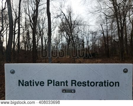Native Plant Restoration Sign With Trees In Woods
