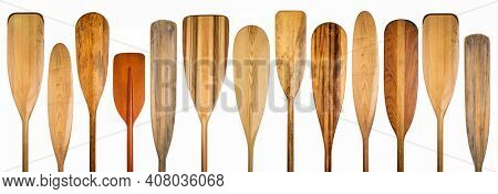 row of wooden canoe paddles, a variety of styles and shapes isolated on white  - paddling concept