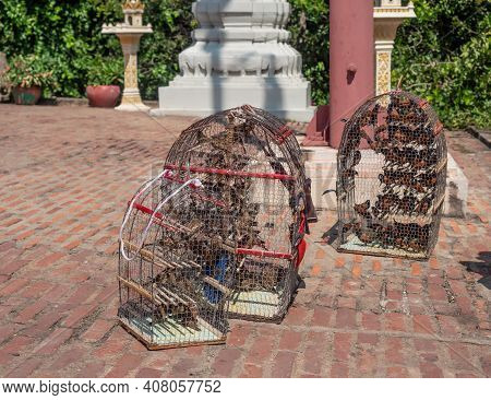 Birds In Cages At Wat Phnom In Phnom Penh, Cambodia. Visitors To The Temple Can Pay A Fee To Release