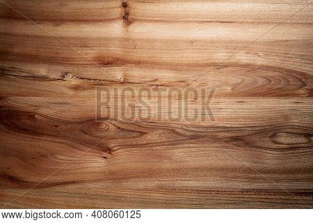 Wood Brown Texture Elm Tree Close Up