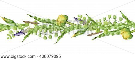 Floral Seamless Border Meadow Grass Watercolor Illustration. Natural Organic Flowers And Herbs Mixed