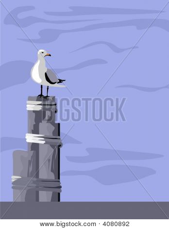 Seagull On Piling