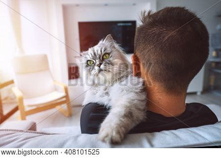 Grey Fluffy Cat With Big Green Eyes Sitting On His Owner Shoulder. Young Man Resting With His Pet On