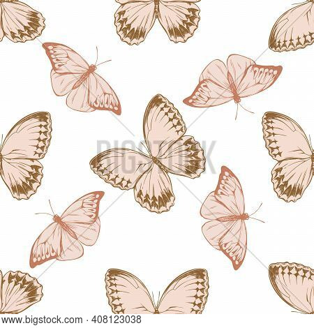 Seamless Pattern With Hand Drawn Pastel Great Orange-tip, Jungle Queens Stock Illustration