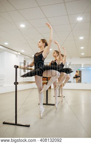 Elegant young ballerinas poses at barre in class