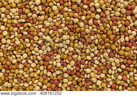 Cat Food Ration Pattern Texture Background
