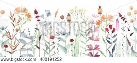 Watercolor floral seamless pattern with wildflowers, plants, leaves and herbs. Panoramic horizontal isolated illustration. Seamless pattern.