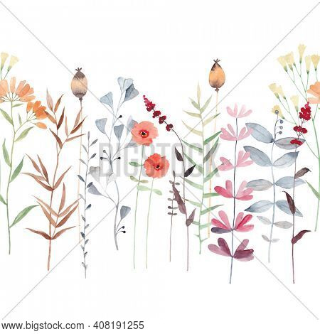 Watercolor floral seamless pattern with wildflowers, plants, leaves and herbs. Seamless pattern.