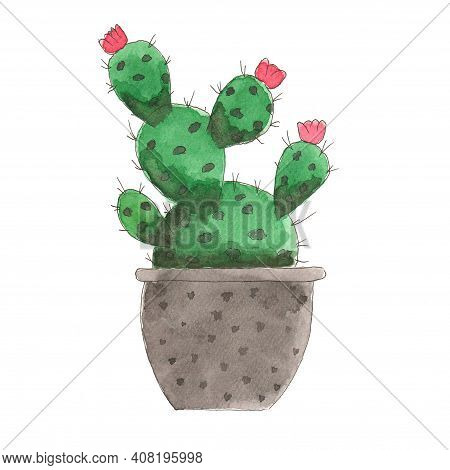 Watercolor Illustration Of A Cactus In A Pot. Illustration For Greeting Cards, Invitations And Other