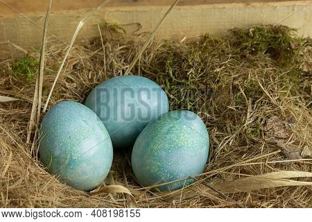 Easter Eggs In The Nest On Rustic Wooden Background. Concept Of Happy Easter Celebration