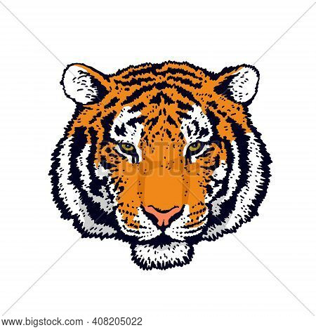 The Symbol Of The New 2022. Tiger Head. Tiger Face. Detailed Drawing Of A Tiger. Vector Illustration