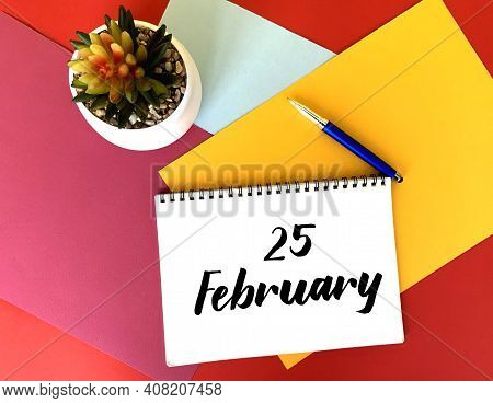 February 25 On A White Notebook On A Colorful Bright Background.next To It Is A Potted Flower And A