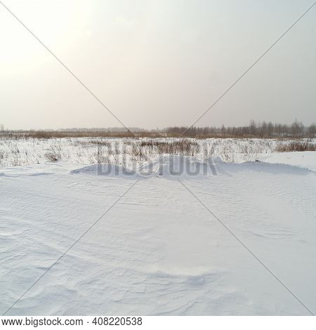 Landscape Of A Snowy Steppe With Sparse Vegetation, Winter Scene