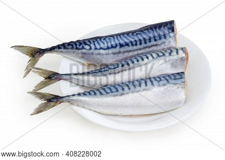 Several Pickled Mild Salted Atlantic Mackerel Without Heads On Dish On A White Background