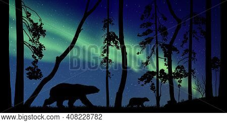 Bears Family In Forest At Night. Animal Silhouettes. Aurora Borealis
