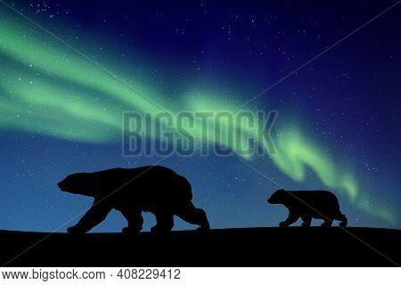 Polar Bears Walking At Night. Animal Silhouette. Green Aurora Borealis