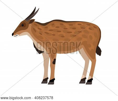 Antelope With Horns. Cartoon African Exotic Character Of Zoo, Symbol Of Hunting Trophy, Hoofed Beast